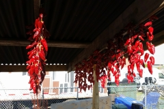 espelette peppers drying in the sun