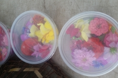 small flower packages