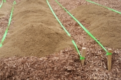 30 inch planting beds