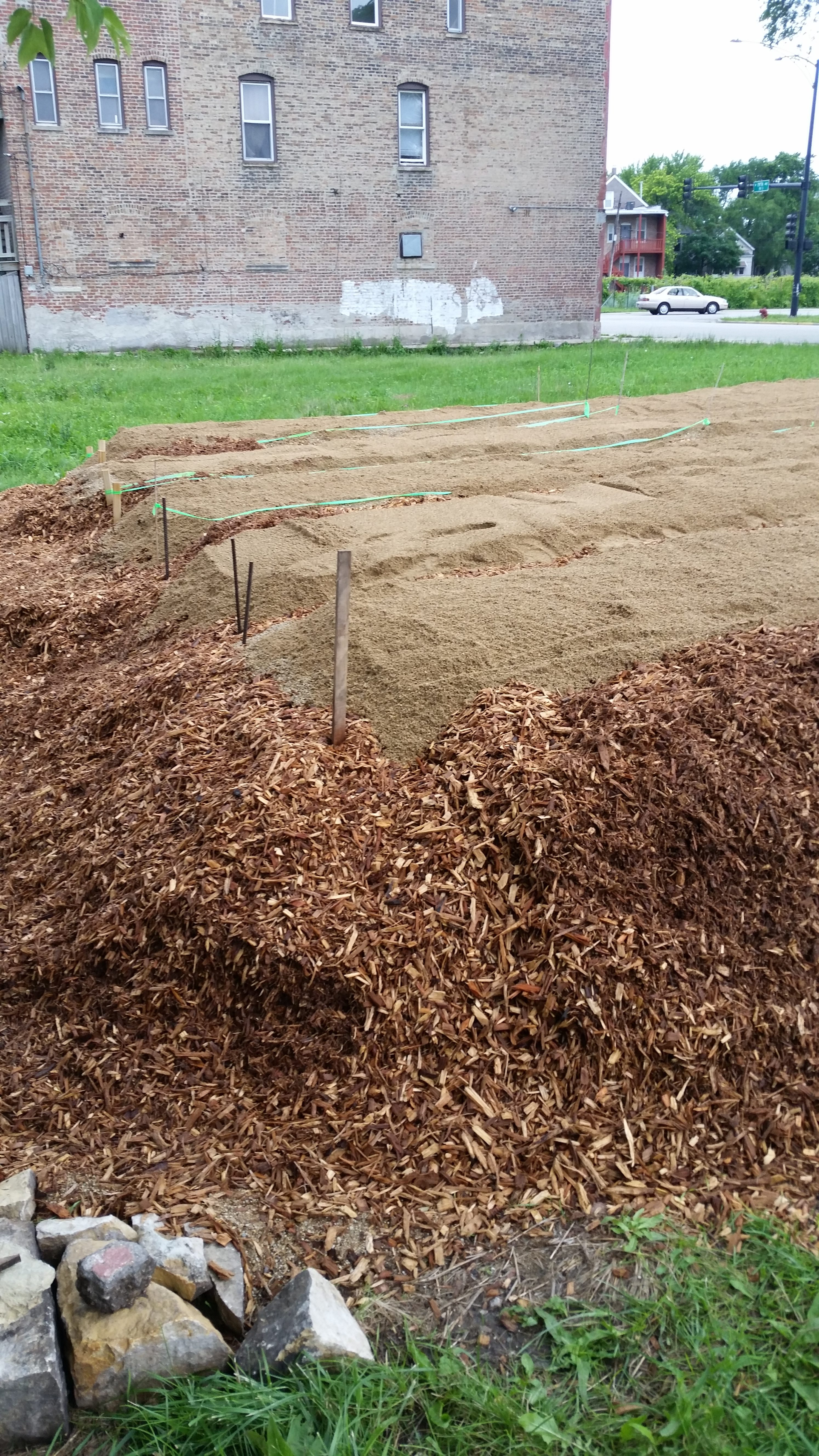 laying-out the planting beds